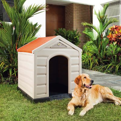 Casas para perros rescatados