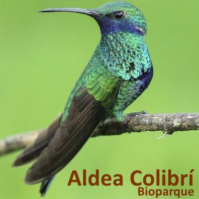 Aldea Colibrí Biopark