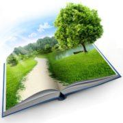 Umweltenzyklopädie Simbiosis