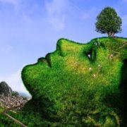 Sabiduría de la madre tierra